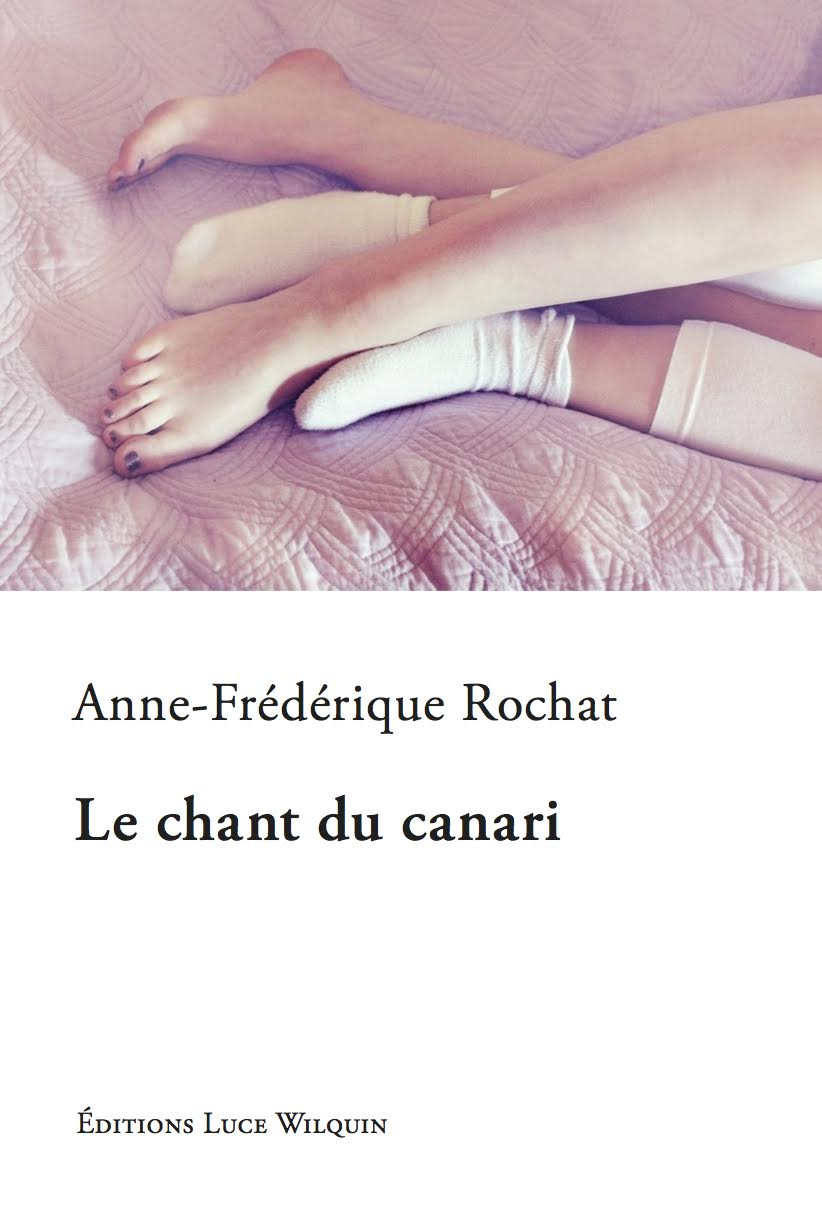 Couverture Le chant du canari